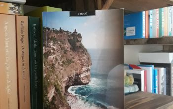 Boek uitgelicht: Dewi – Mark van der Laan