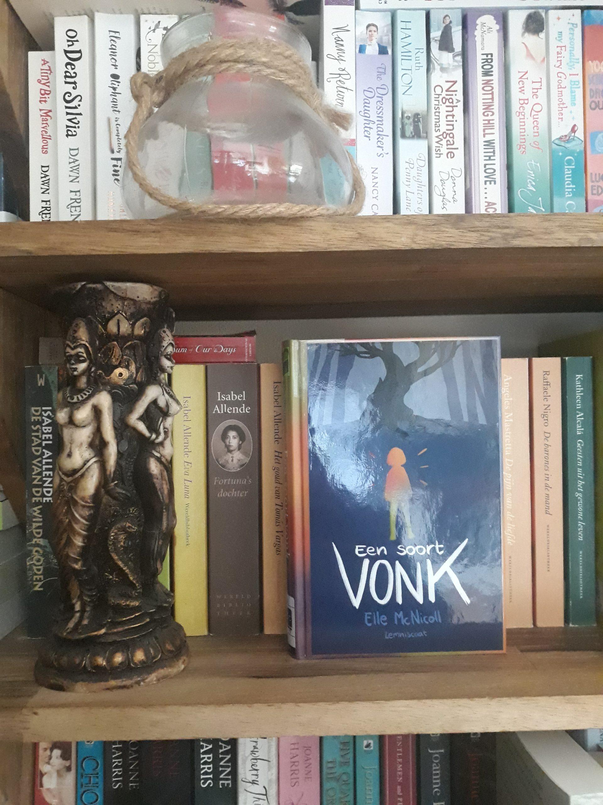 Boekrecensie: Een soort vonk – Elle McNicoll
