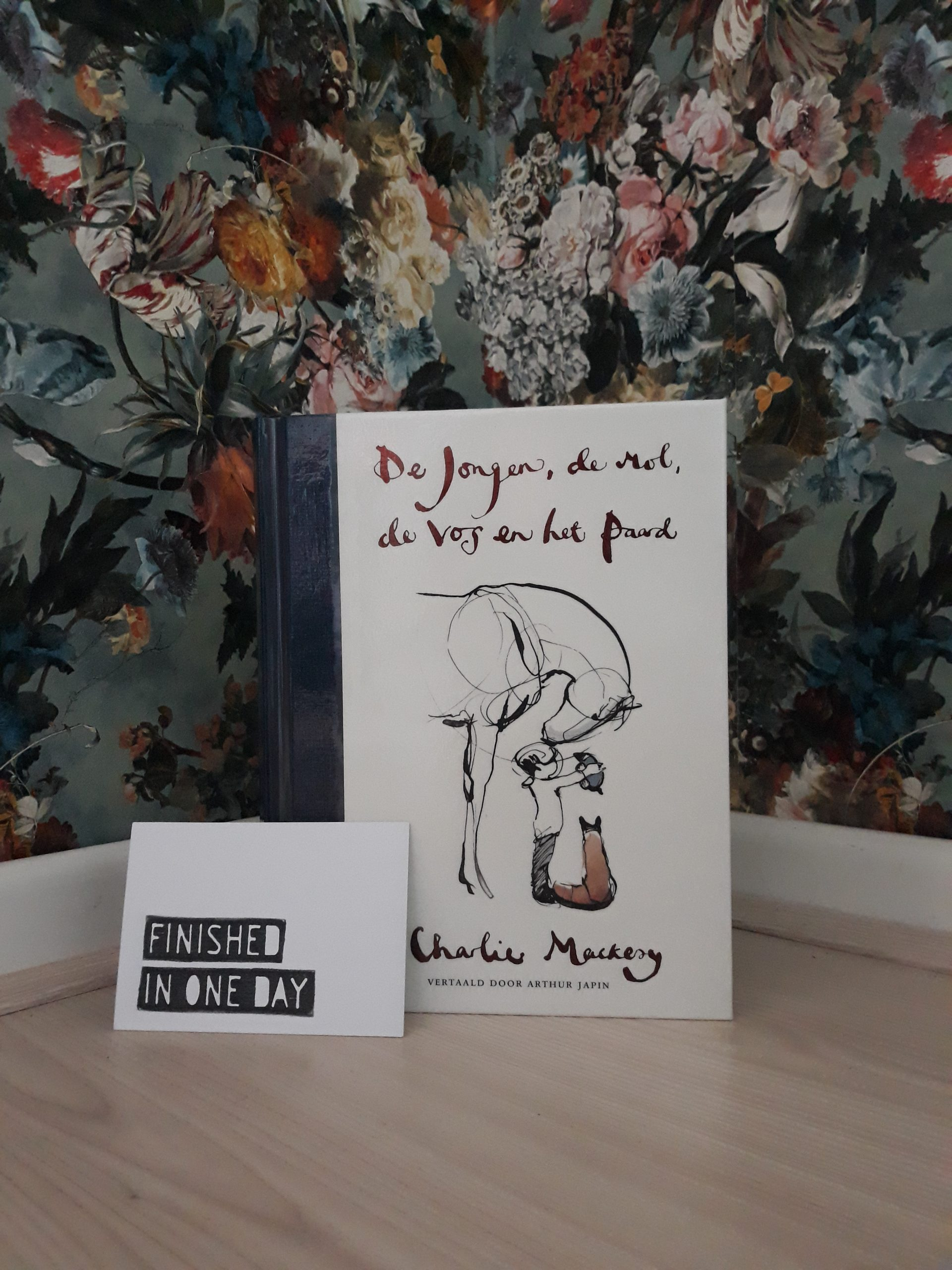 Boekrecensie: De jongen, de mol, de vos en het paard – Charles Mackesy